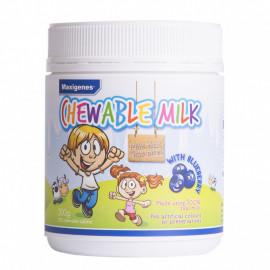 Maxigenes 牛奶咀嚼片蓝莓味150粒 含有真正水果 不含人工色素 Chewable Milk with Blueberry 150s